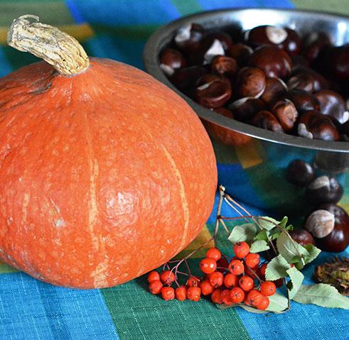 Alimentazione in autunno - Estetista Amica